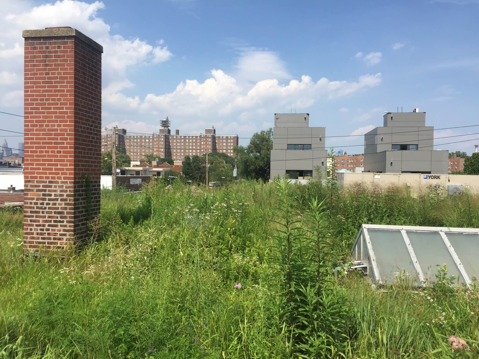 Highview Creations - Commercial Green Roof for Linda Tool & Die Corporation