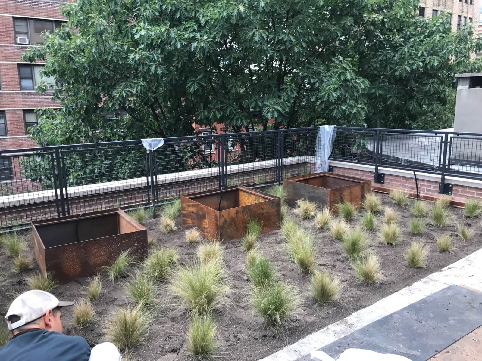 Highview Creations - Residential Green Roof for King Street