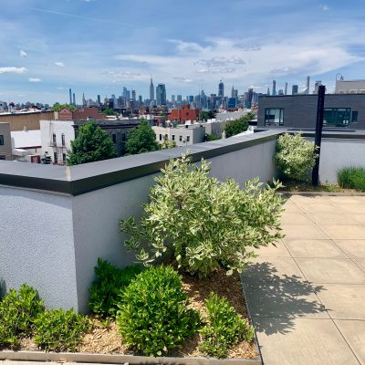Highview Creations green roof design-build NYC