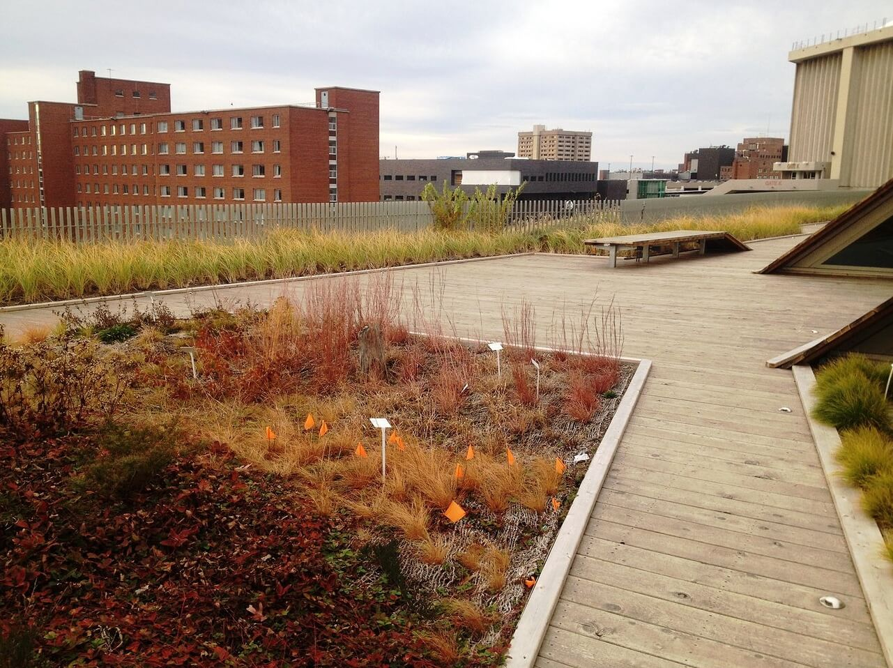 Highview Creations - Institutional Green Roof for SUNY ESF