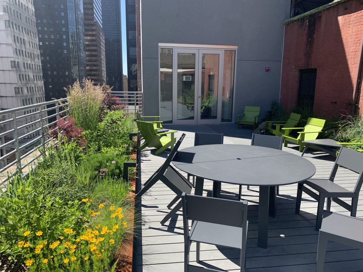 Green roofs in new york city