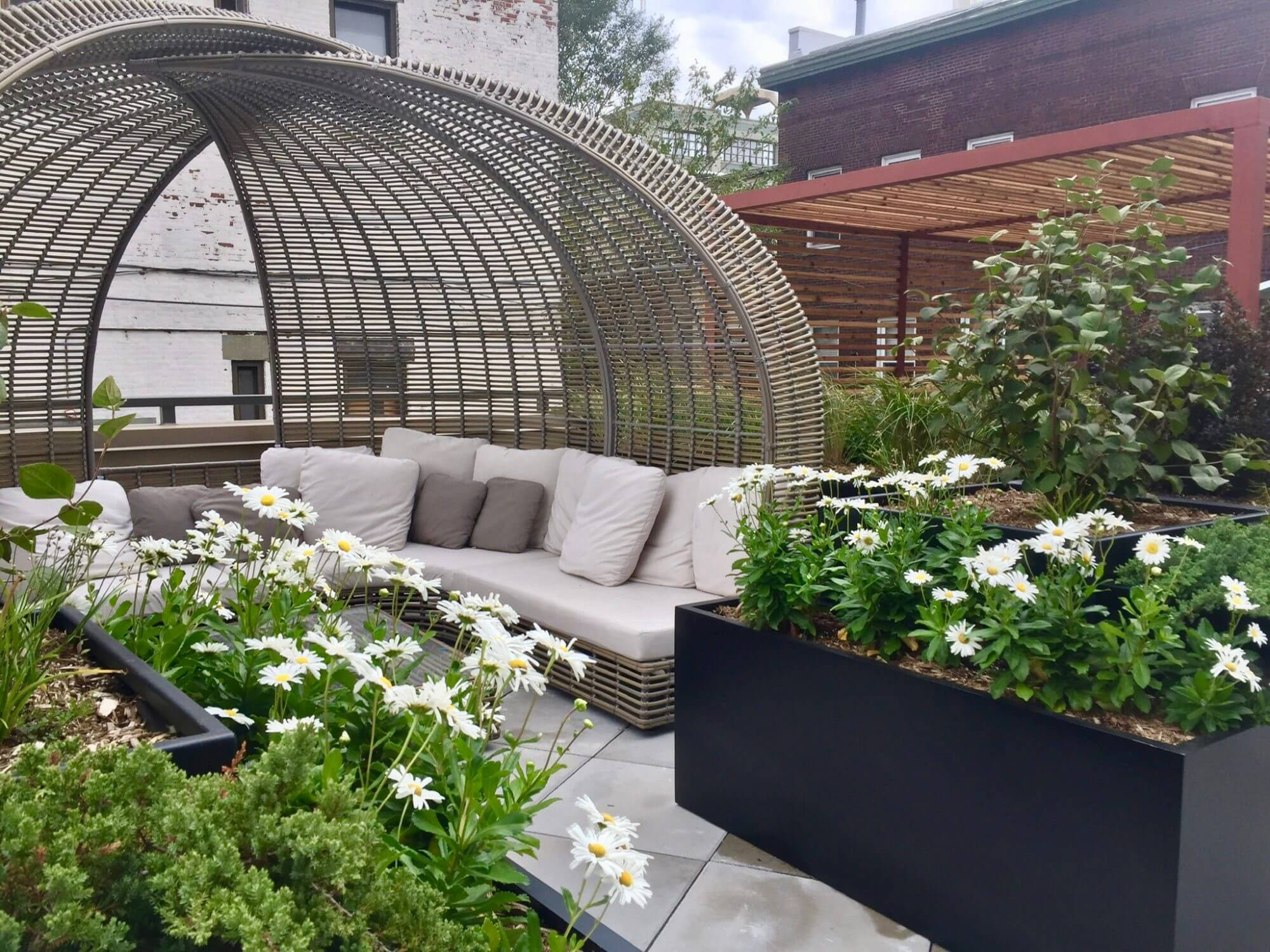 Highview Creations - Residential Green Roof for 321 Wythe