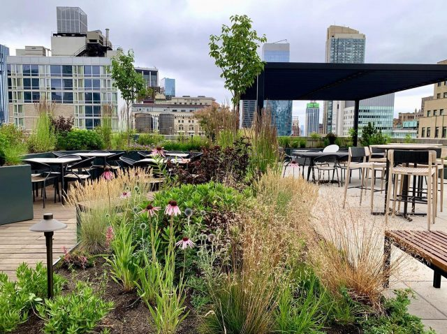 New project up on the website! Click the link in our bio to read about the rooftop garden we designed and installed at the Hollingsworth building in Manhattan. Lots of fun design features went into creating this midtown rooftop oasis.